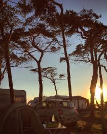 """Campingplatz """"Wäldchen"""" am Abend"""