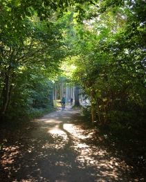 Weg zum Gespensterwald