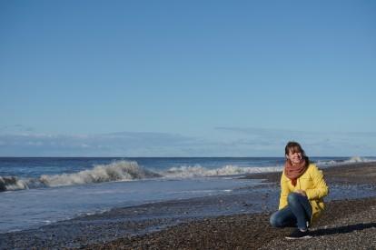 Muscheln sammeln am Strand bei Nymindegab