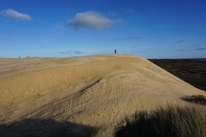 Steffen auf einer riesigen Düne beim Rubjerg Knude Fyr