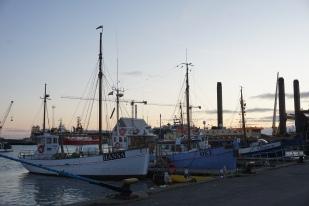 Skagen Havn