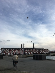Träumen in Skagen Havn